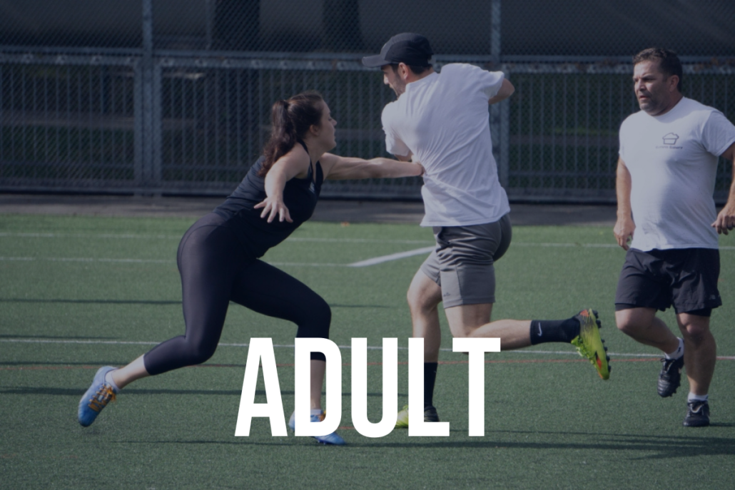 Click for Adult Touch Leagues